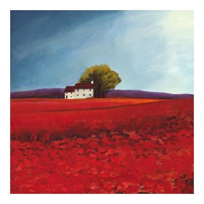 Field of poppies-Philip Bloom-Art Print