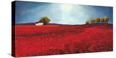 Field of poppies-Philip Bloom-Stretched Canvas Print
