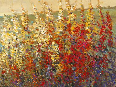 Field of Spring Flowers I-Tim O'toole-Art Print