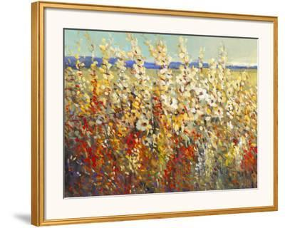 Field of Spring Flowers II-Tim O'toole-Framed Giclee Print