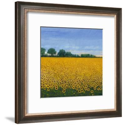 Field of Sunflowers I-Tim OToole-Framed Art Print