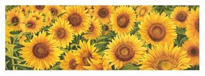 https://imgc.artprintimages.com/img/print/field-of-sunflowers_u-l-f79h8f0.jpg?p=0
