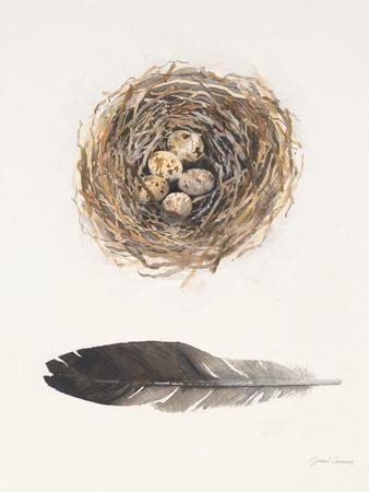 https://imgc.artprintimages.com/img/print/field-study-nest_u-l-pgomo60.jpg?p=0