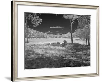 Field-J.D. Mcfarlan-Framed Photographic Print