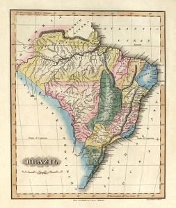 Brazil, c.1823 by Fielding Lucas