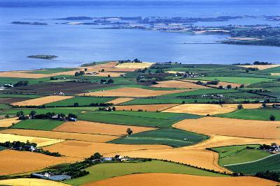 Fields in Late Summer Along North Down Strangford Lough, County Down, Northern Ireland-Chris Hill-Photographic Print