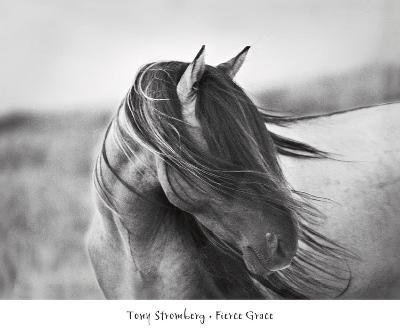 Fierce Grace-Tony Stromberg-Art Print