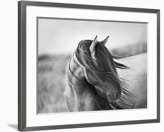 Fierce Grace-Tony Stromberg-Framed Photographic Print