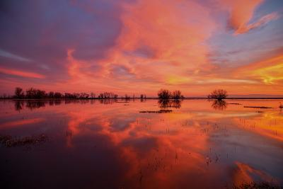 Fiery Marsh Sunset and Reflection--Photographic Print