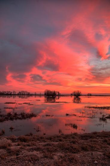 Fiery Marsh Sunset Sky--Photographic Print