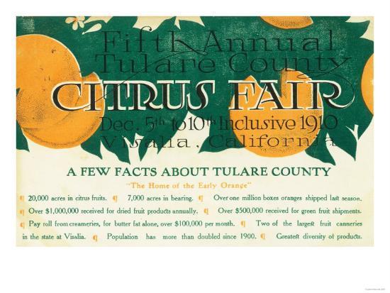 Fifth Annual Tulare County Citrus Fair Promotion - Tulare County, CA-Lantern Press-Art Print