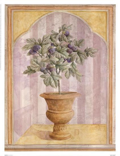 Fig Niche-Lisa Canney Chesaux-Art Print