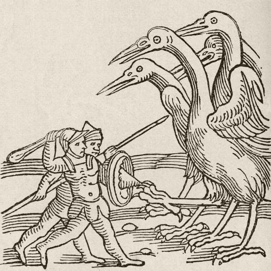 Fight Between Pygmies and Cranes. a Story from Greek Mythology--Giclee Print