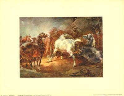 https://imgc.artprintimages.com/img/print/fighting-horses_u-l-e2pg90.jpg?p=0