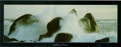 Fighting Waves--Art Print