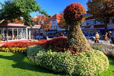 Figure made of Flowers on Bummelallee Alley, Bad Harzburg, Germany