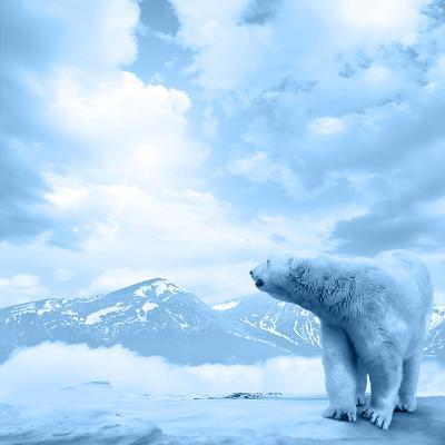 Figure of a Polar Bear on High Mountain Landscape-Oleksii Sergieiev-Photographic Print