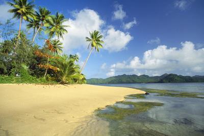 Fiji Beach--Premium Photographic Print