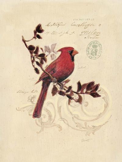 Filigree Cardinal-Chad Barrett-Art Print