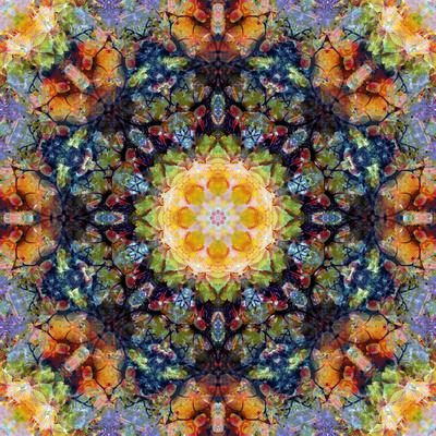 https://imgc.artprintimages.com/img/print/filigree-shining-mandala-ornament-from-flower-photographs-conceptual-layer-work_u-l-q11z9pb0.jpg?p=0