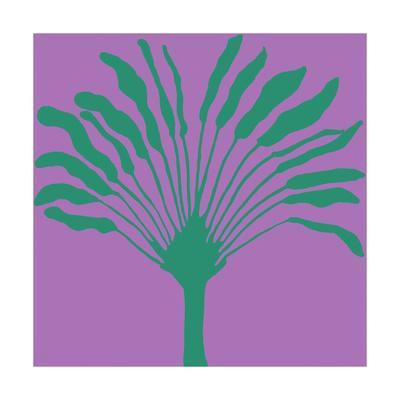 Tropical Flora H