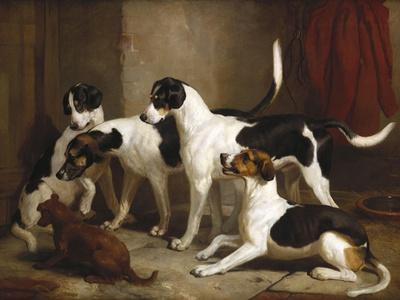 The Puckeridge Foxhounds: 'Rantipole', 'Rummager', 'Racer' and 'Reveller', 1845