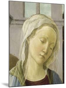 La Vierge et l'Enfant avec anges dite Vierge à la grenade by Filippino Lippi