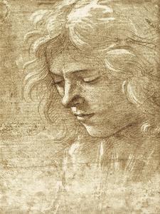 Sepia Maiden by Filippino Lippi