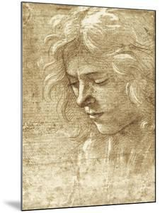 Sepia Maiden by Filippino Lippi