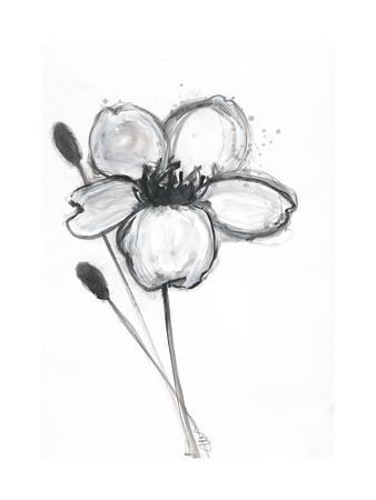 Snow Blossom 1