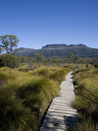 Final Stretch of Overland Track to Narcissus Hut, Mount Olympus on Shores of Lake St Clair in Back-Julian Love-Photographic Print
