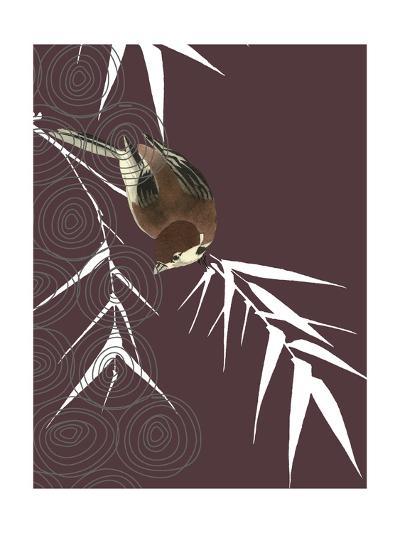 Finch in Dusk--Photo