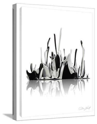 Finding Equilibrium-Don Farrall-Stretched Canvas Print