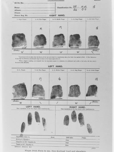 Fingerprint Sheet--Photographic Print