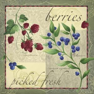 Berry Patch by Fiona Stokes-Gilbert