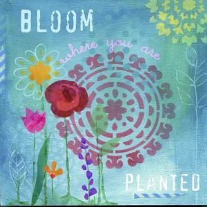 Bloom by Fiona Stokes-Gilbert