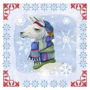 Winter Llama by Fiona Stokes-Gilbert