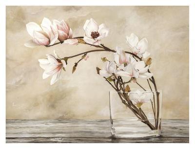https://imgc.artprintimages.com/img/print/fiori-di-magnolia_u-l-f8v5i50.jpg?p=0
