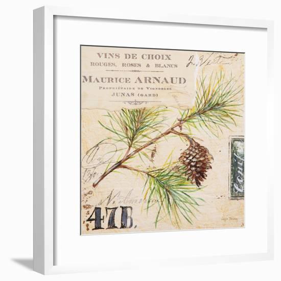 Fir Branch…Sketchbook-Angela Staehling-Framed Art Print