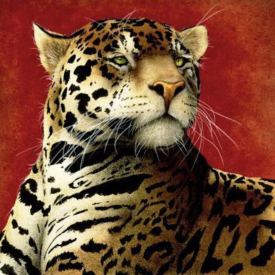 Fire Cat-Will Bullas-Premium Giclee Print