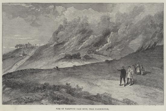 Fire on Harewood Dale Moor, Near Scarborough--Giclee Print