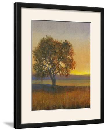 Firelight II-Tim O'toole-Framed Photographic Print