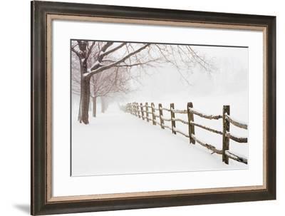 First Fall-Bill Coleman-Framed Giclee Print