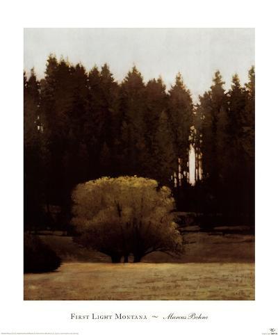 First Light Montana-Marcus Bohne-Art Print