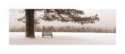 First Snow II-Mike Sleeper-Giclee Print