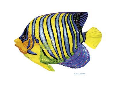 Fish 2 Blue-Yellow-Olga And Alexey Drozdov-Giclee Print