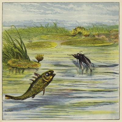 https://imgc.artprintimages.com/img/print/fish-and-fly_u-l-ppn2nu0.jpg?p=0
