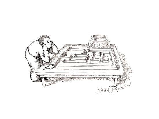 Fish maze - Cartoon-John O'brien-Premium Giclee Print
