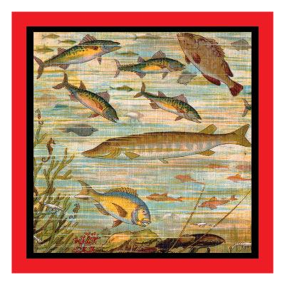 Fish Pond--Art Print