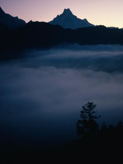 Fish Tail Mountain Above a Layer of Cloud, Pokhara, Gandaki, Nepal-Shannon Nace-Photographic Print
